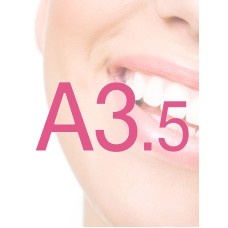 Diocare Prothese-elementen A3.5
