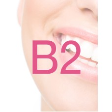Diocare Prothese-elementen B2